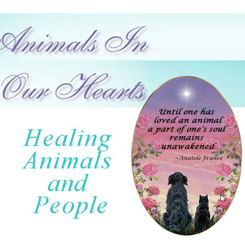 Animals in Our Hearts