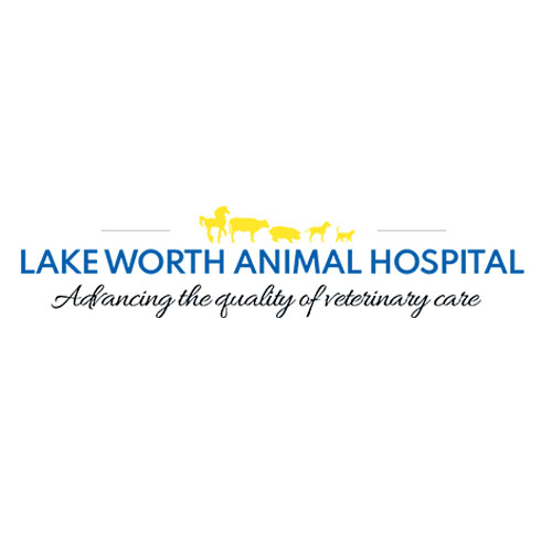 Lake Worth Animal Hospital